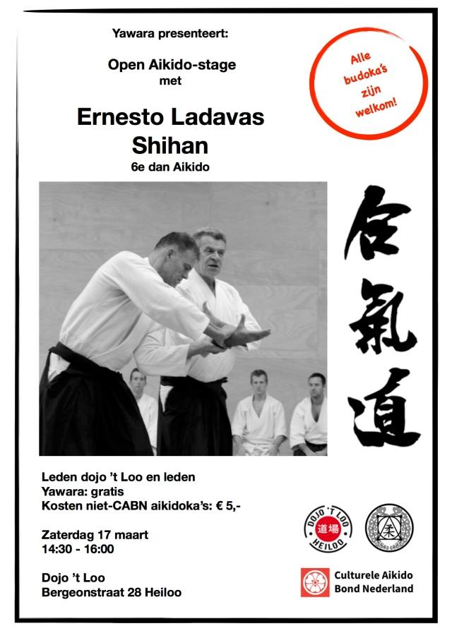 Poster stage Ernesto dojo t Loo 17-03-2018
